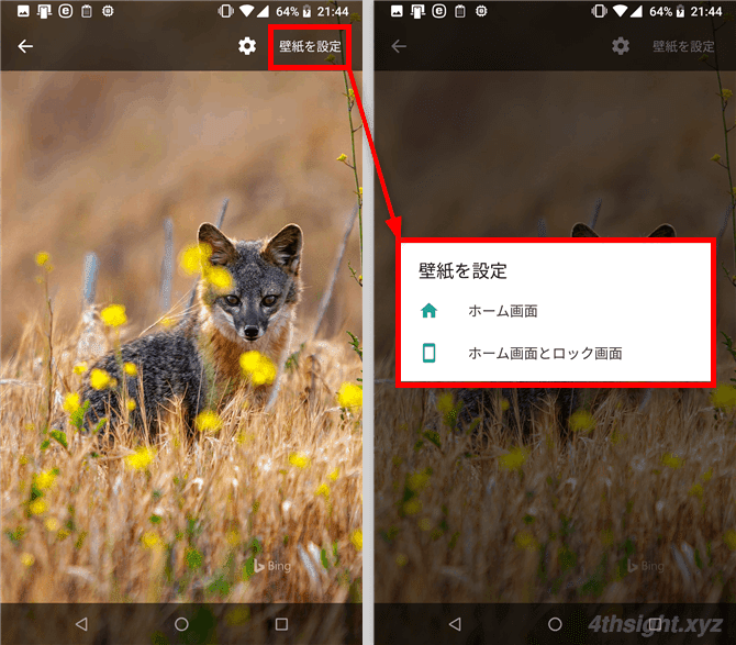 Android端末の壁紙にBing検索の日替わり写真を表示する方法